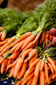 Bunches of fresh carrots — Stock Photo