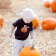 Toddler and pumpkin - Photo
