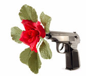 Flower in the barrel of the gun — Stock Photo