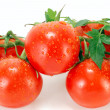 Ripe tomatoes - Stock Photo