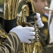 Stock Photo: Military band