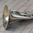 Old horn - Stock Photo