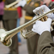 Trumpeters - Stock Photo