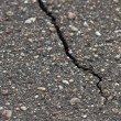 Crack in the sidewalk — Stock Photo