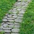 Cobblestone pathway - Stock Photo