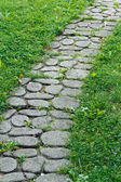 Cobblestone pathway — Stock Photo