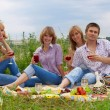 Young at the picnic — Stock Photo #5586825