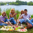 Young at the picnic — Stock Photo