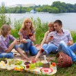 Young at the picnic — Foto Stock