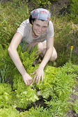 Smiling gardener in vegetable garden. — Stock Photo