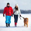 Walking with dog — Stock Photo