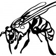 Wasp on white background - Stock Vector