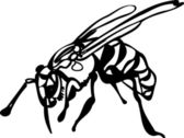 Wasp on white background — Stock Vector
