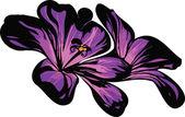 Two florets purple — Stock Vector
