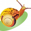 Snail crawling up snail crawling up snail crawling up — Stock Vector