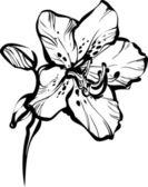 Five petals on a stem — Stock Vector