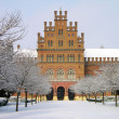 Università di Chernivtsi, Ucraina — Foto Stock