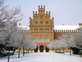 Chernivtsi University, Ukraine — Foto Stock