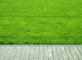 Lawn, grass plot — Stock Photo