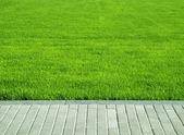 Lawn, grass plot — Stock Photo