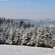 Winter landscape in Bavaria — Stock Photo