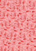 Enstaka rosor. — Stockvektor
