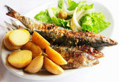 Grilled portugal sardine fish — Stock Photo