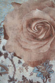 Pattern with rose on a fabric as background — Stock Photo