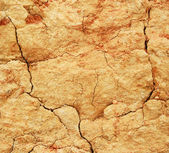 Soil texture as background — Stock Photo