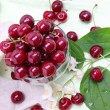 Sweet cherry in glass bowl - Stock Photo