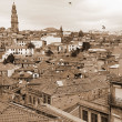 Portugal. Porto. Aerial view. Sepia-toned — Stock Photo