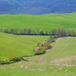 Italy. Val D'Orcia valley. Tuscany landscape — Stock Photo #6252308