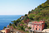 Italy. Cinque Terre. Village of Riomaggiore — Stock Photo