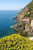 Italien. cinque terre. byn riomaggiore — Stock fotografie