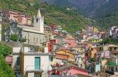 Italy. Cinque Terre. Riomaggiore — Stock Photo