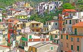 Italia. delle cinque terre. riomaggiore — Foto Stock