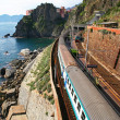 italy. cinque terre. train at station manarola — Stock Photo