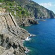Italy. Cinque Terre coastline — Stock Photo