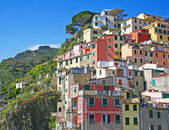 Italy. Cinque Terre. Riomaggiore village — Stock Photo