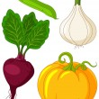Set of vegetables4 — Stock Vector