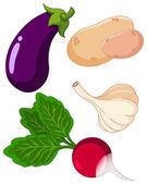 Set of vegetables3 — Stock Vector