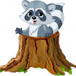 Raccoon in tree stump - Stock Vector