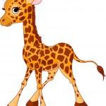 Giraffe Calf — Stock Vector