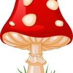 Mushroom amanita — Stock Vector #6135861