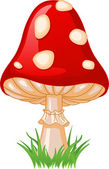 Mushroom amanita — Stock Vector