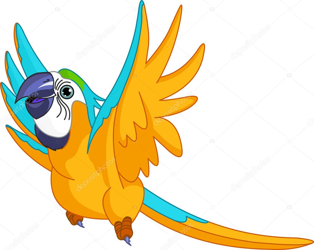 Cartoon parrot flying - photo#10
