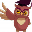 Cartoon Wise Owl with graduation cap — Stock Vector