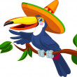 Toucan with sombrero — Stock Vector