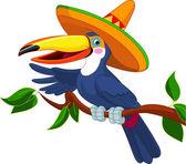 Toucan with sombrero — Stock Vector
