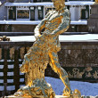 Stock Photo: Fountain Samson in winter period
